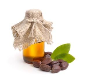 jojoba oil - leaf - seed
